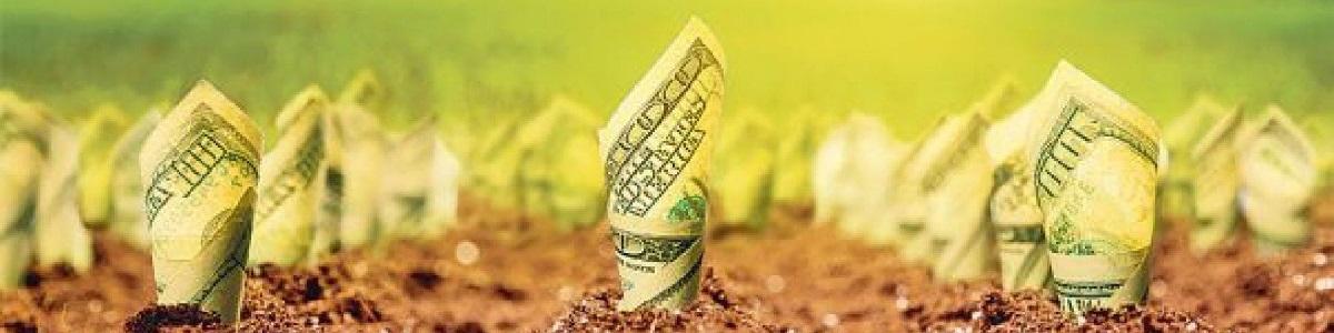 Гайд «Где мои деньги?»